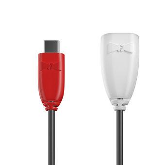 Câble USB Type C vers A femelle 1m Rouge, Noir et Blanc (marquage image «guitar»)