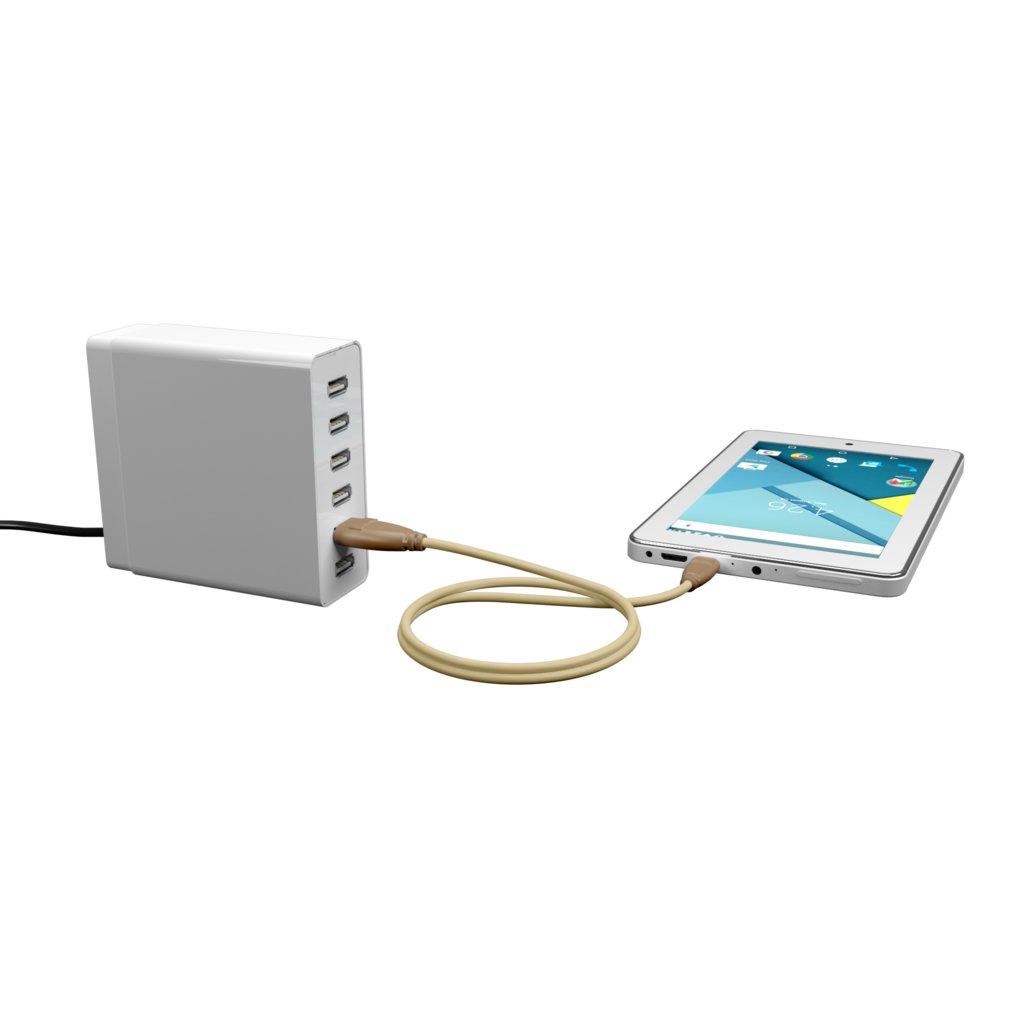 Câble iPhone iPad tressé 1m Beige et Tissu sable (impr. image «cat» & motif «panther») - Vue en utilisation