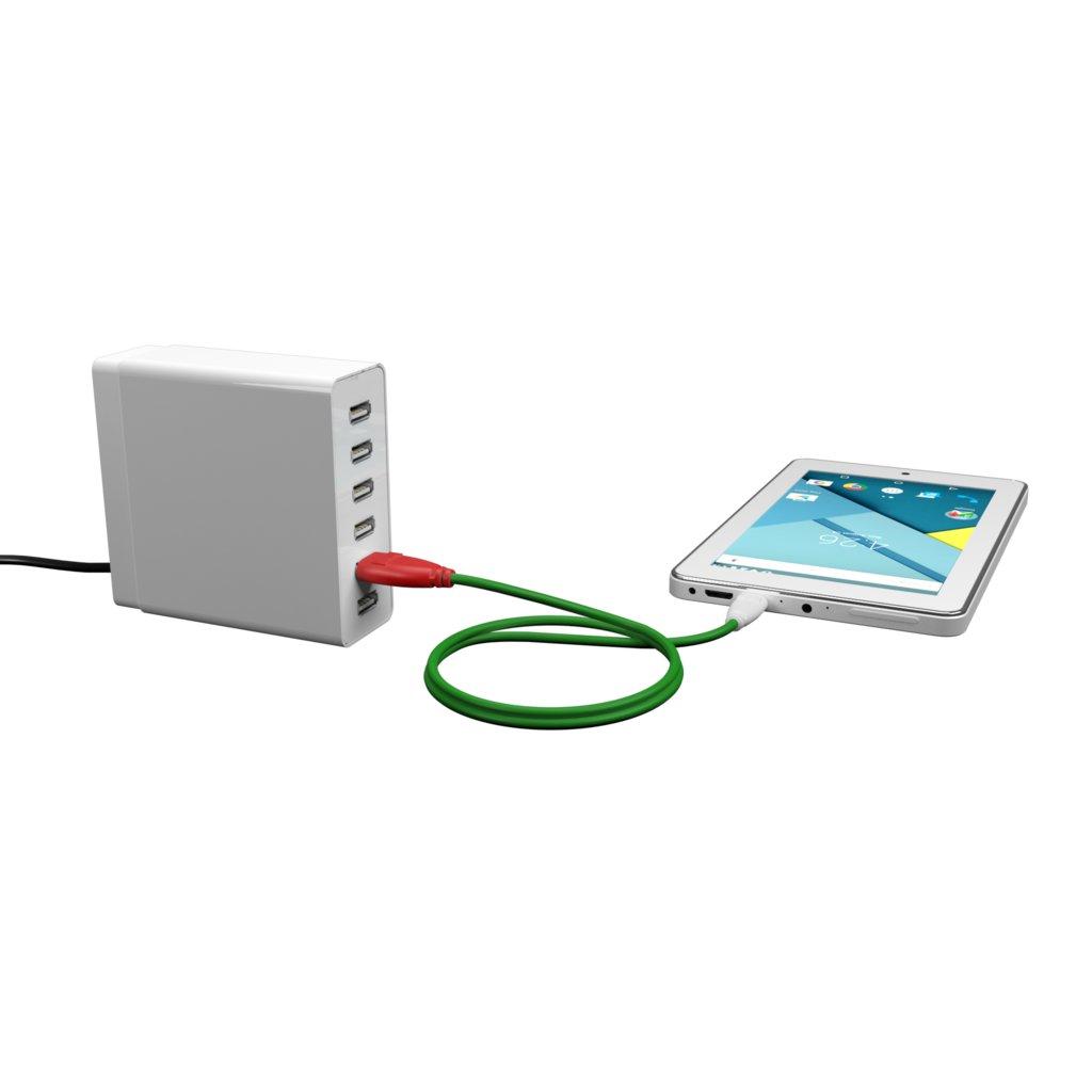 Câble iPhone iPad tressé 50cm Rouge, Tissu vert et Blanc (impr. motif «pizza» & motif «pizza») - Vue en utilisation