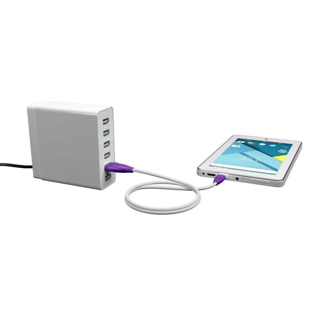 Câble Apple Lightning 1m Violet et Blanc (sans marquage) - Vue en utilisation
